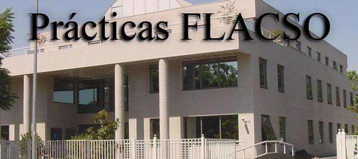 Convocatoria: Prácticas de Investigación en FLACSO-Chile, 2016